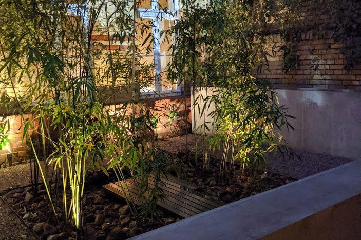 bambus olivin